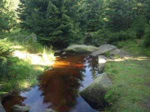 Torfwasserbach